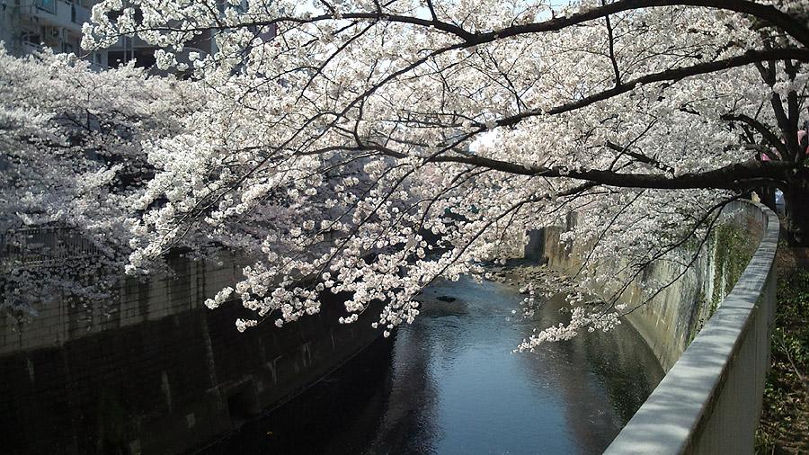 江戸川公園2