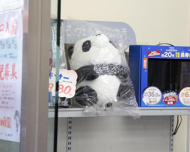 パンダのぬいぐるみ3